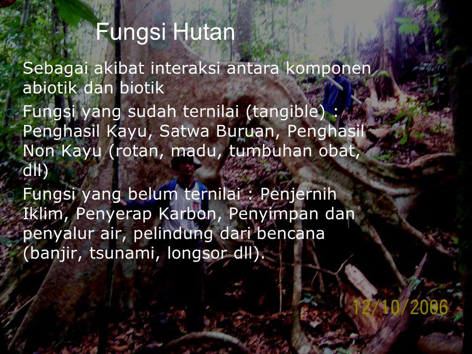 Fungsi Hutan Sebagai akibat interaksi antara komponen abiotik dan biotik.