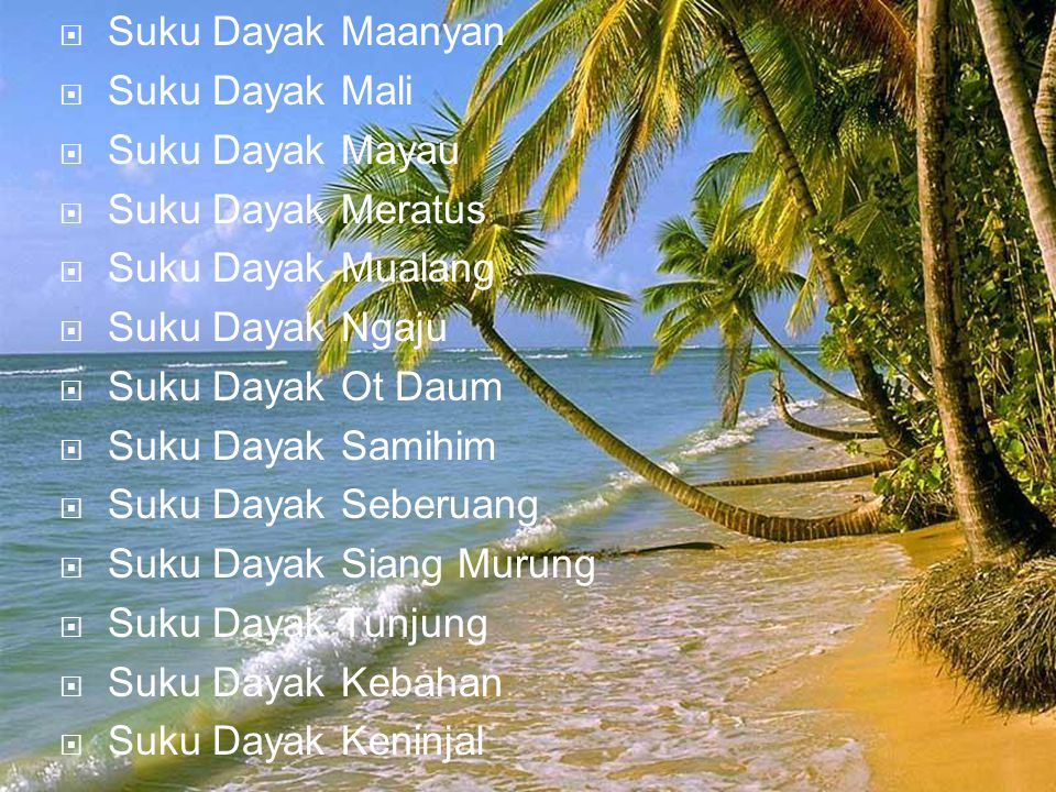 Suku Dayak Maanyan Suku Dayak Mali. Suku Dayak Mayau. Suku Dayak Meratus. Suku Dayak Mualang. Suku Dayak Ngaju.