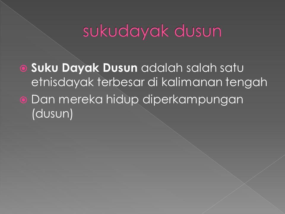 sukudayak dusun Suku Dayak Dusun adalah salah satu etnisdayak terbesar di kalimanan tengah.