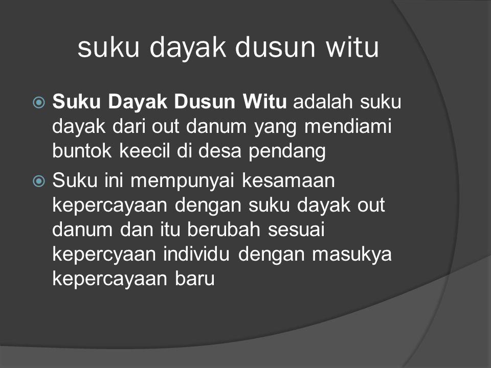 suku dayak dusun witu Suku Dayak Dusun Witu adalah suku dayak dari out danum yang mendiami buntok keecil di desa pendang.