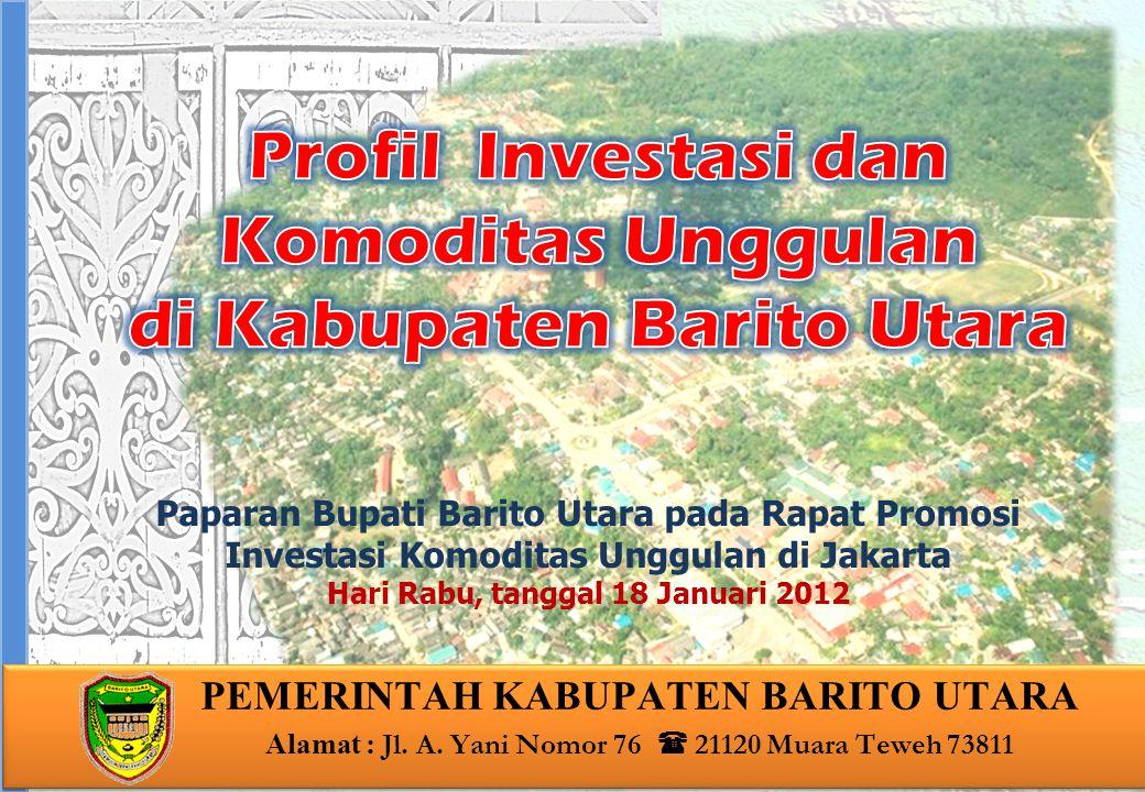 Profil Investasi dan Komoditas Unggulan di Kabupaten Barito Utara