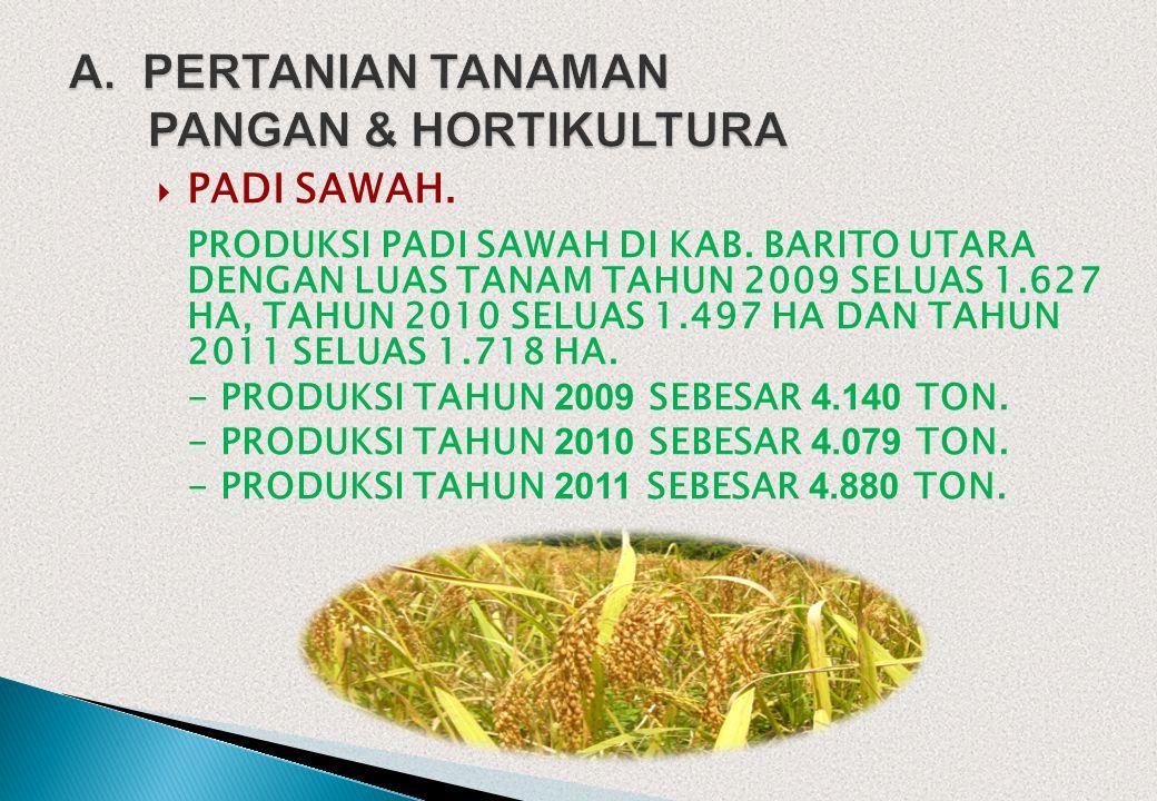 A. PERTANIAN TANAMAN PANGAN & HORTIKULTURA