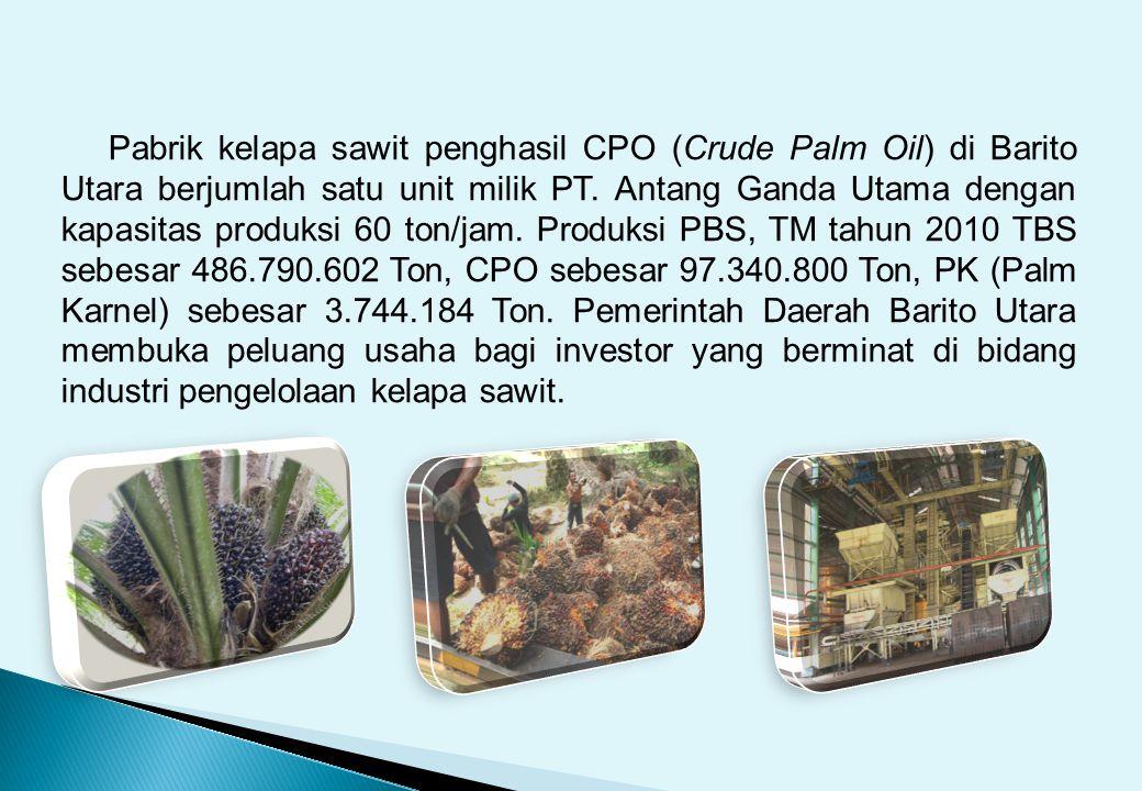 Pabrik kelapa sawit penghasil CPO (Crude Palm Oil) di Barito Utara berjumlah satu unit milik PT.