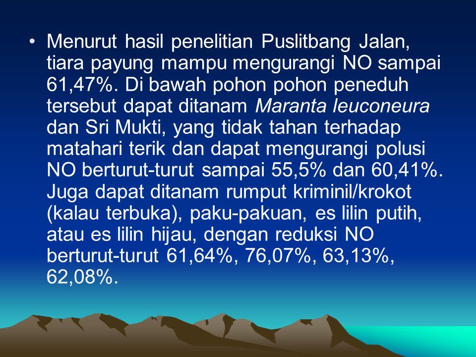 Menurut hasil penelitian Puslitbang Jalan, tiara payung mampu mengurangi NO sampai 61,47%.
