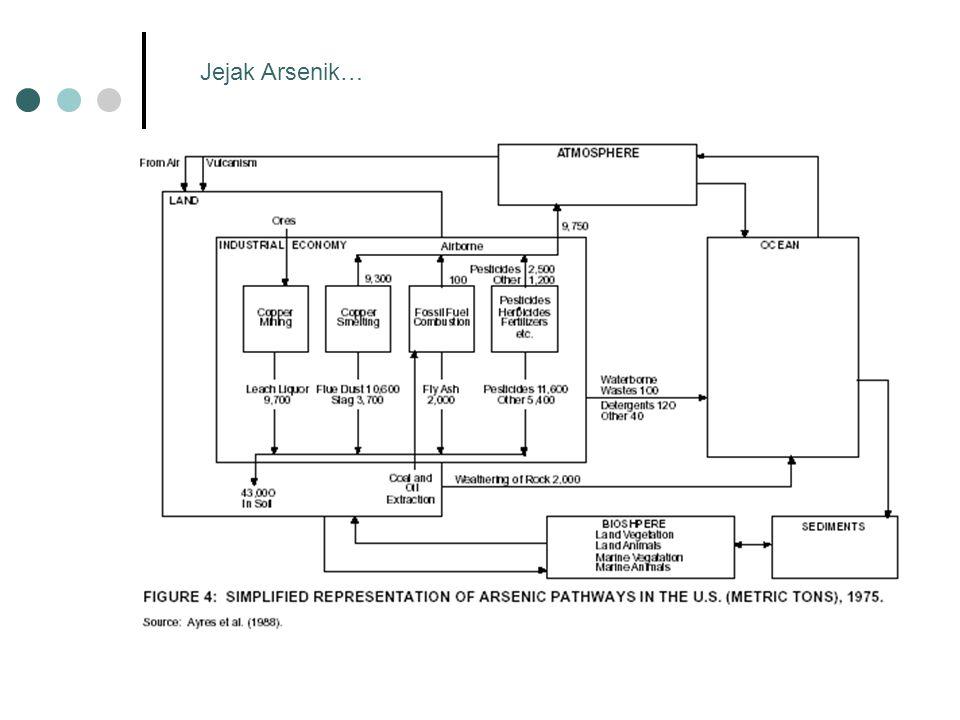 Jejak Arsenik…