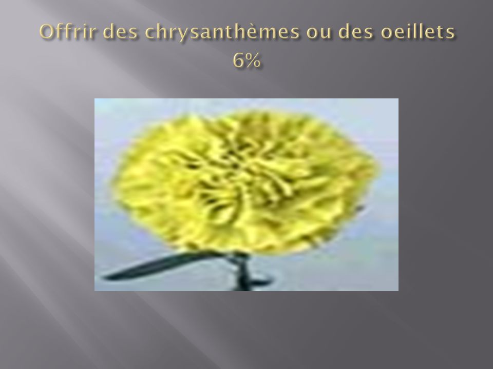 Offrir des chrysanthèmes ou des oeillets 6%