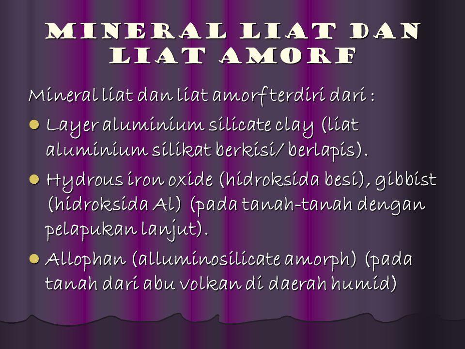 Mineral Liat dan Liat Amorf