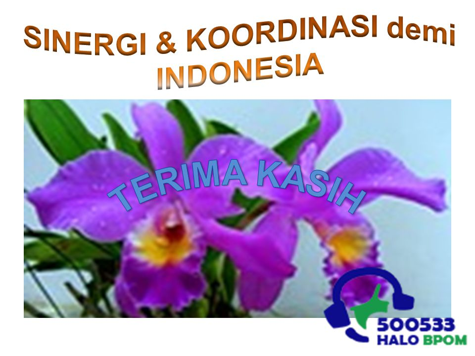 SINERGI & KOORDINASI demi INDONESIA