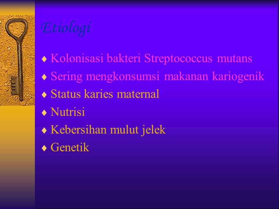 Etiologi Kolonisasi bakteri Streptococcus mutans