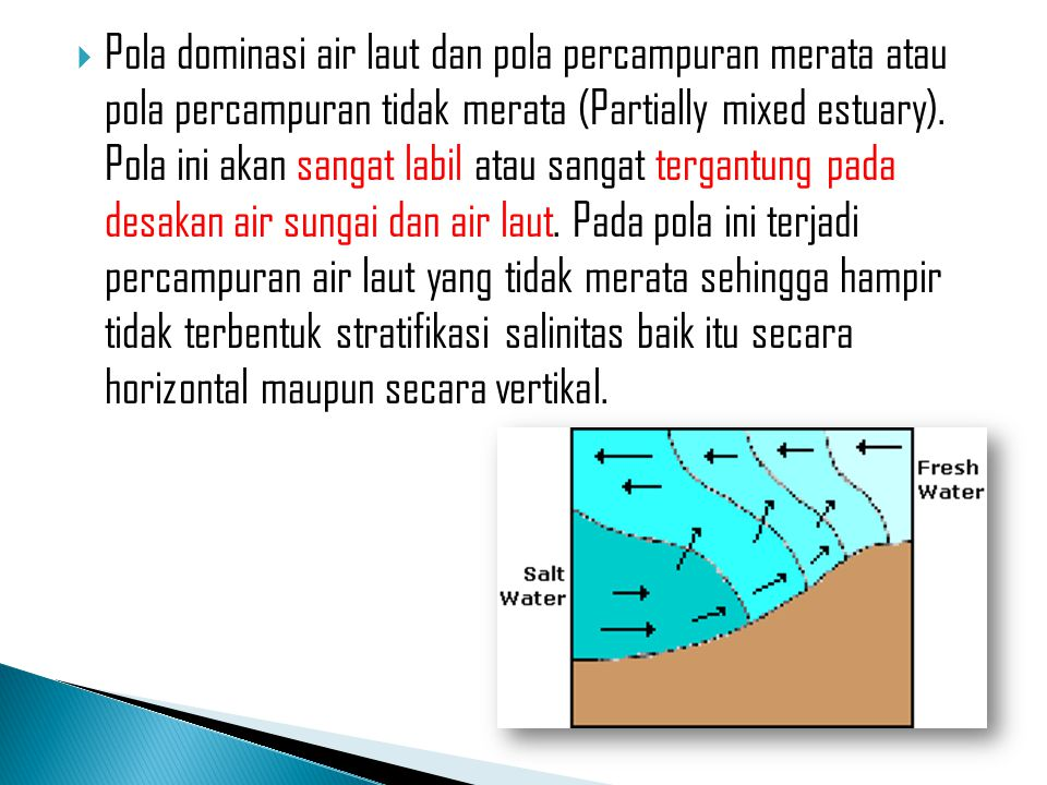 Pola dominasi air laut dan pola percampuran merata atau pola percampuran tidak merata (Partially mixed estuary).