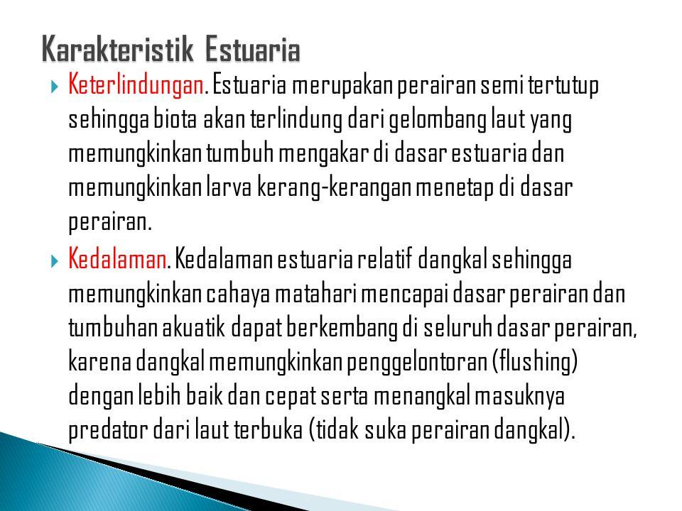 Karakteristik Estuaria