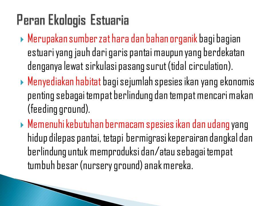 Peran Ekologis Estuaria
