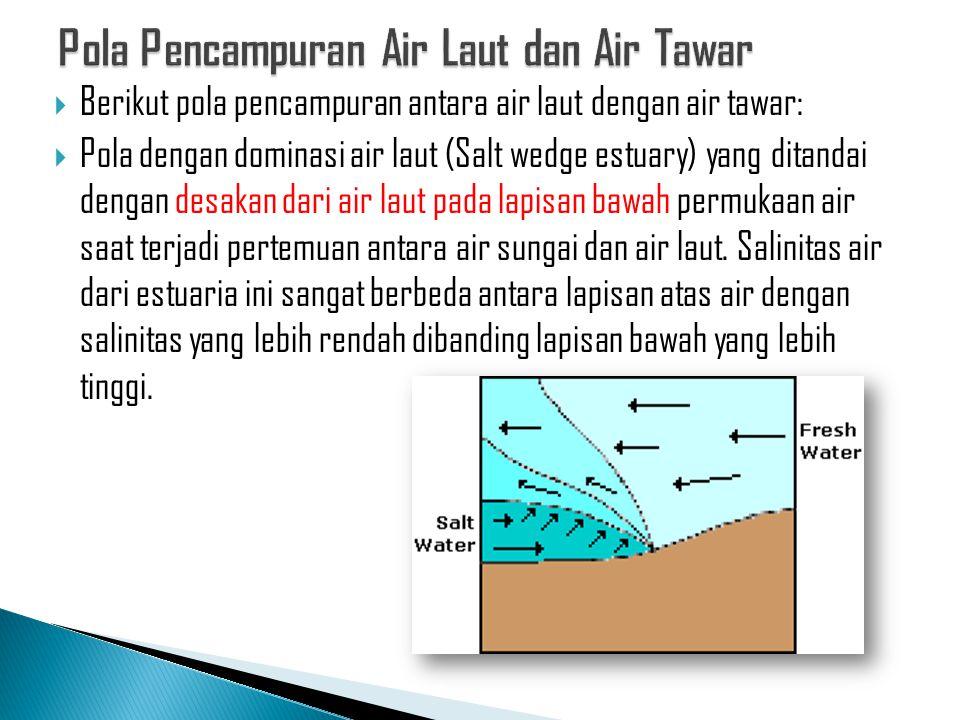 Pola Pencampuran Air Laut dan Air Tawar