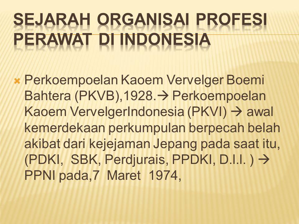 Sejarah Organisai Profesi Perawat di Indonesia