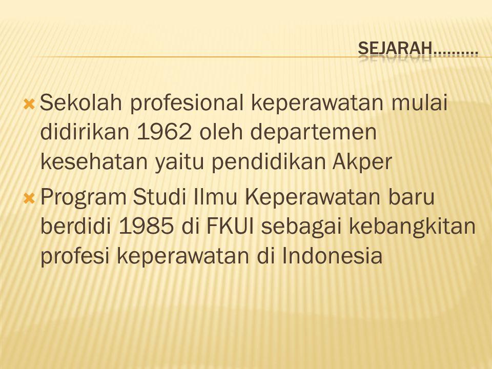 Sejarah.......... Sekolah profesional keperawatan mulai didirikan 1962 oleh departemen kesehatan yaitu pendidikan Akper.