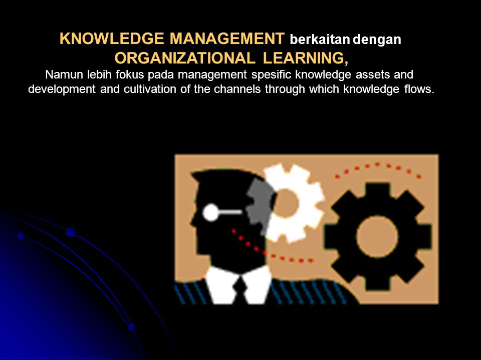 ORGANIZATIONAL LEARNING,