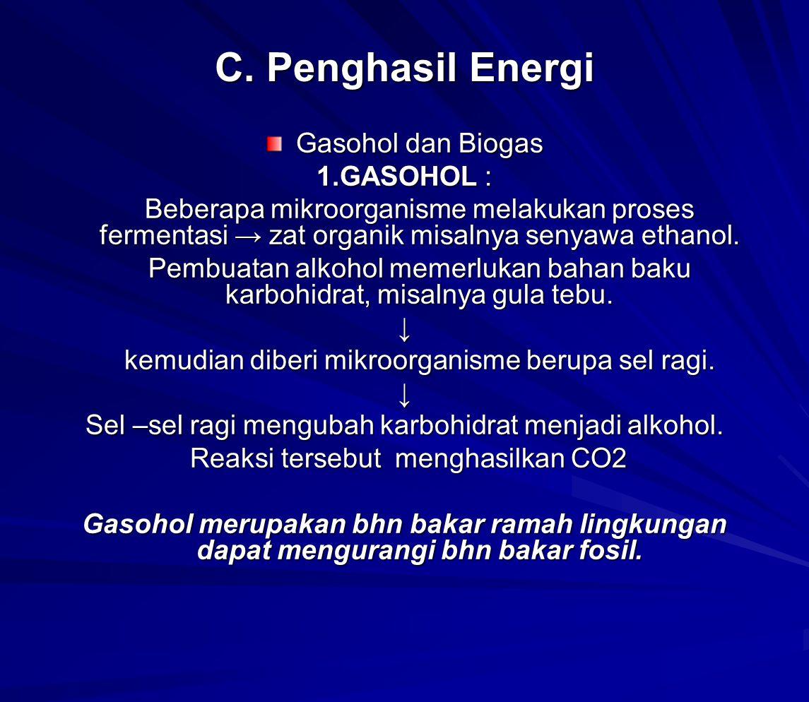 C. Penghasil Energi Gasohol dan Biogas 1.GASOHOL :