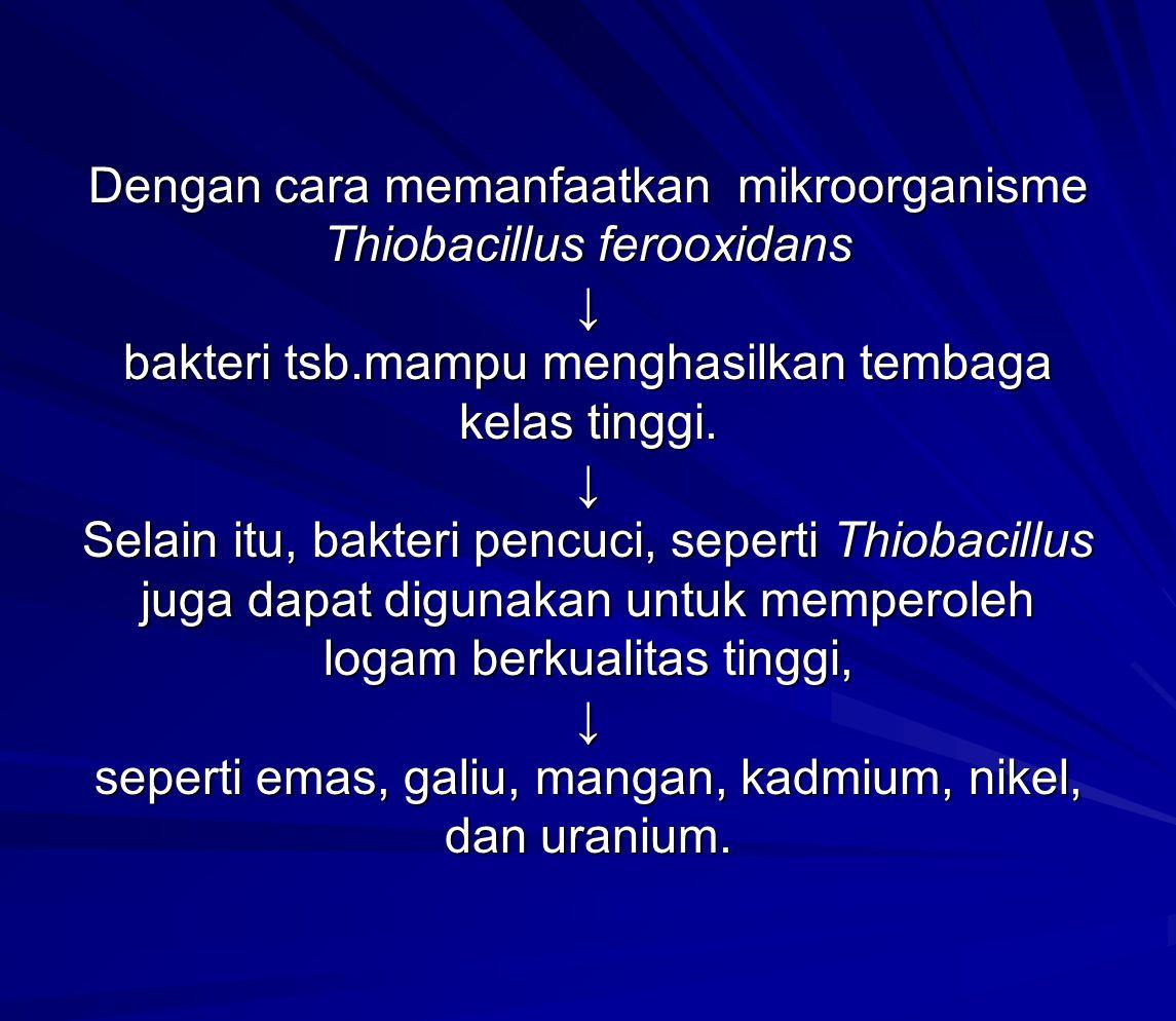 Dengan cara memanfaatkan mikroorganisme Thiobacillus ferooxidans ↓ bakteri tsb.mampu menghasilkan tembaga kelas tinggi.