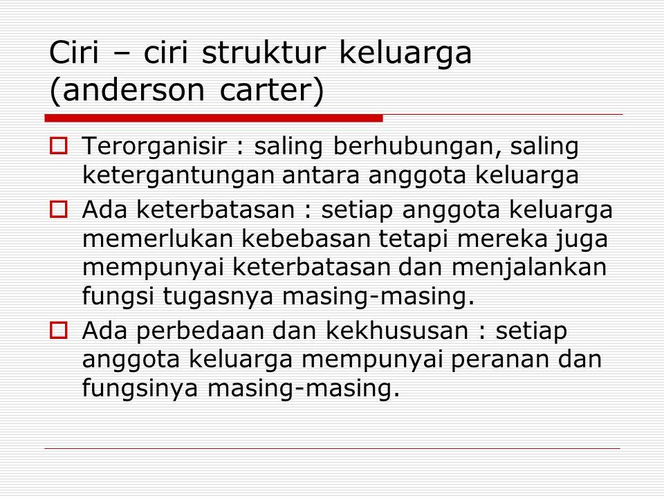 Ciri – ciri struktur keluarga (anderson carter)