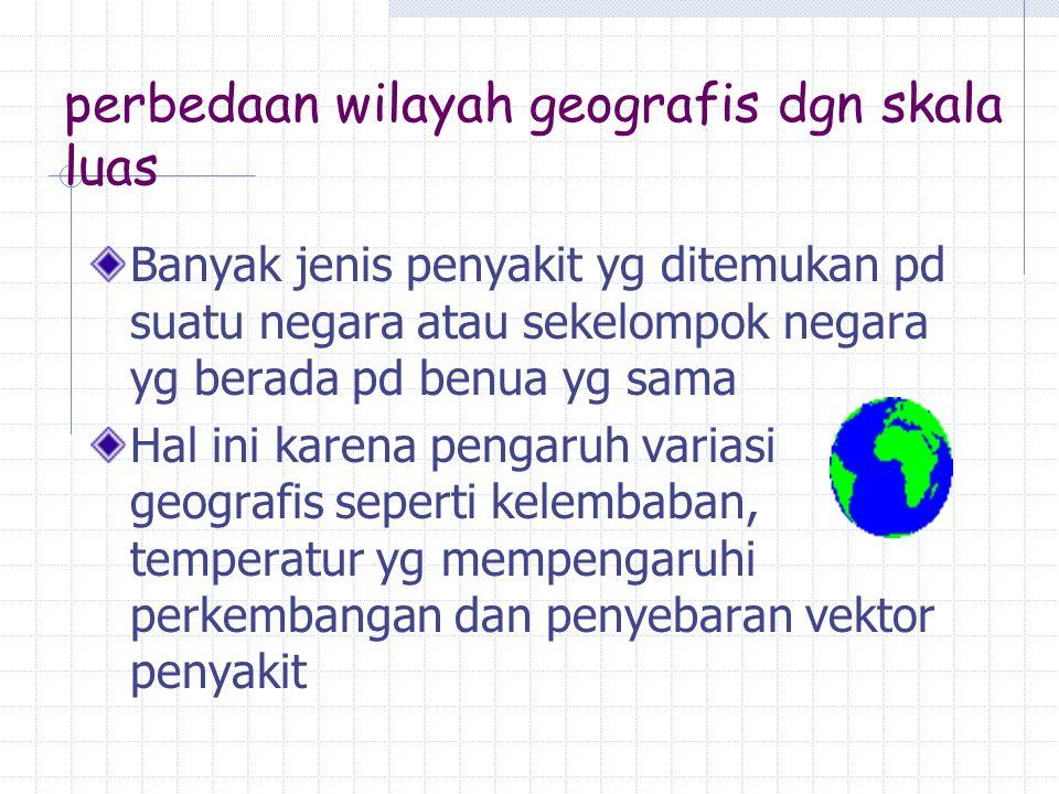 perbedaan wilayah geografis dgn skala luas