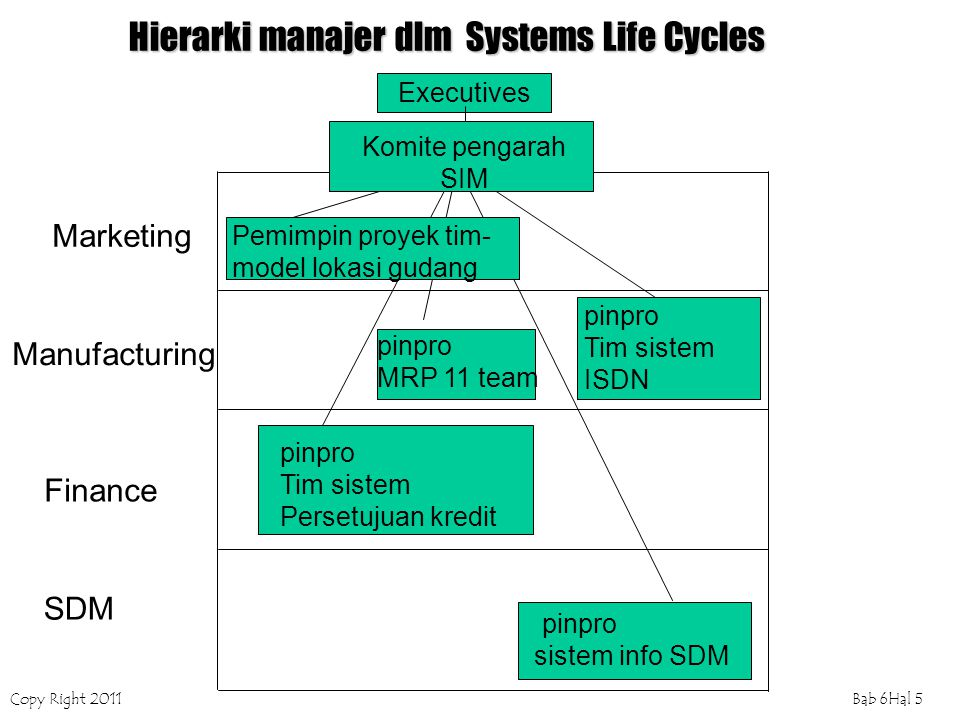 Hierarki manajer dlm Systems Life Cycles