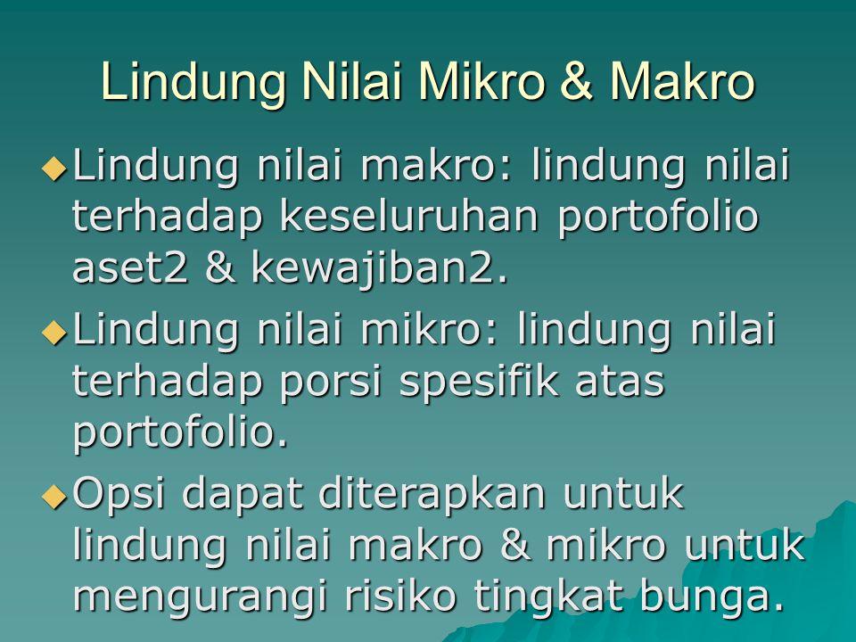 Lindung Nilai Mikro & Makro
