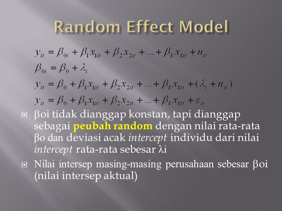 Random Effect Model