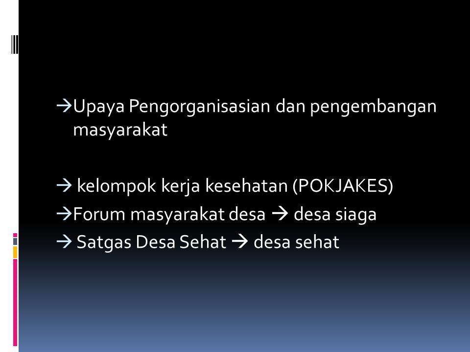 Upaya Pengorganisasian dan pengembangan masyarakat