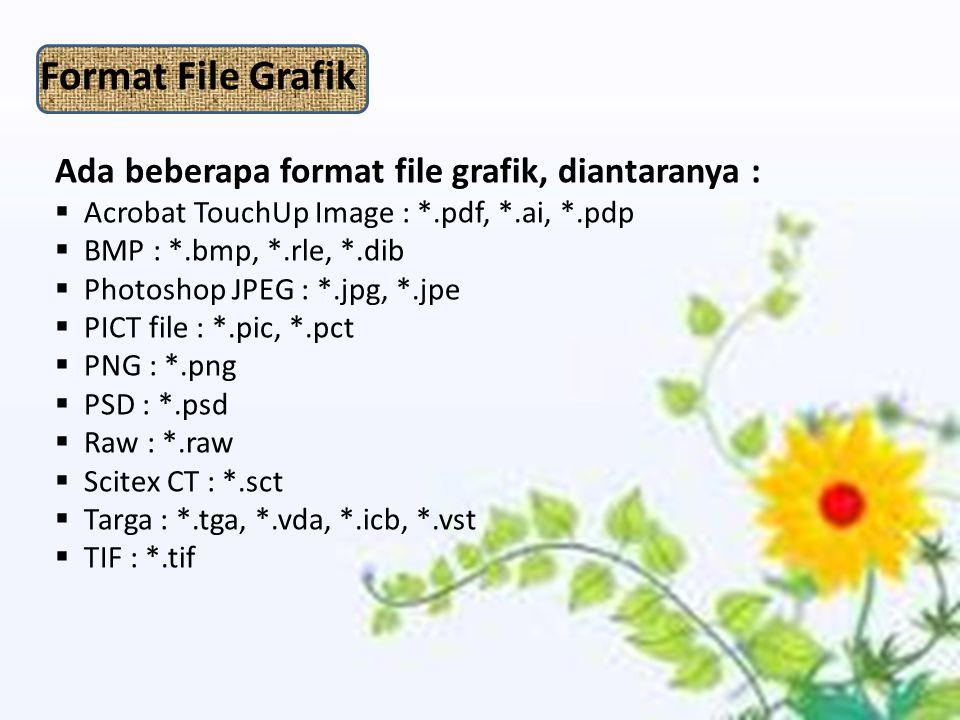 Format File Grafik Ada beberapa format file grafik, diantaranya :