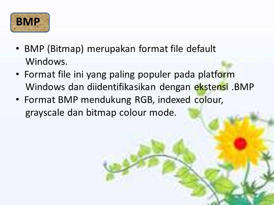 BMP BMP (Bitmap) merupakan format file default Windows.