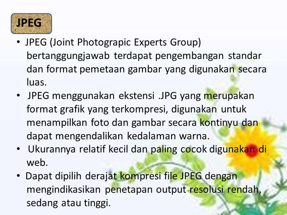 JPEG JPEG (Joint Photograpic Experts Group)