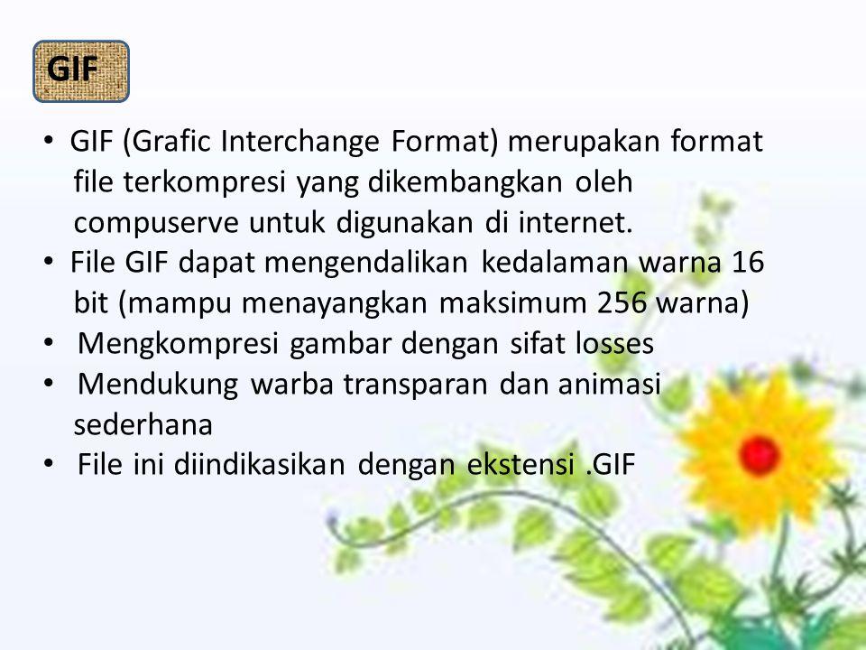 GIF GIF (Grafic Interchange Format) merupakan format