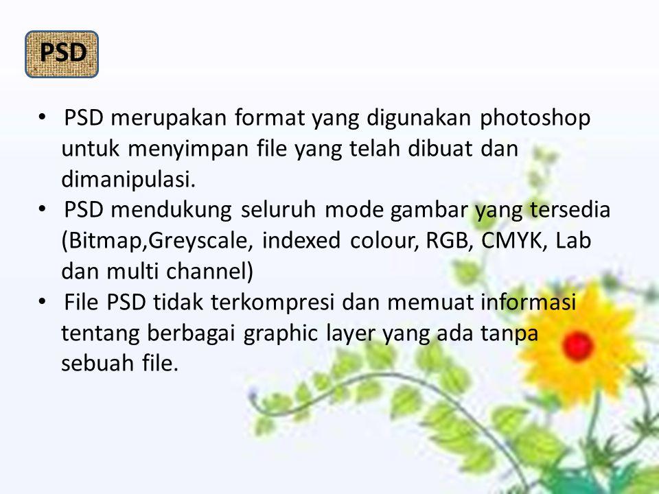 PSD PSD merupakan format yang digunakan photoshop