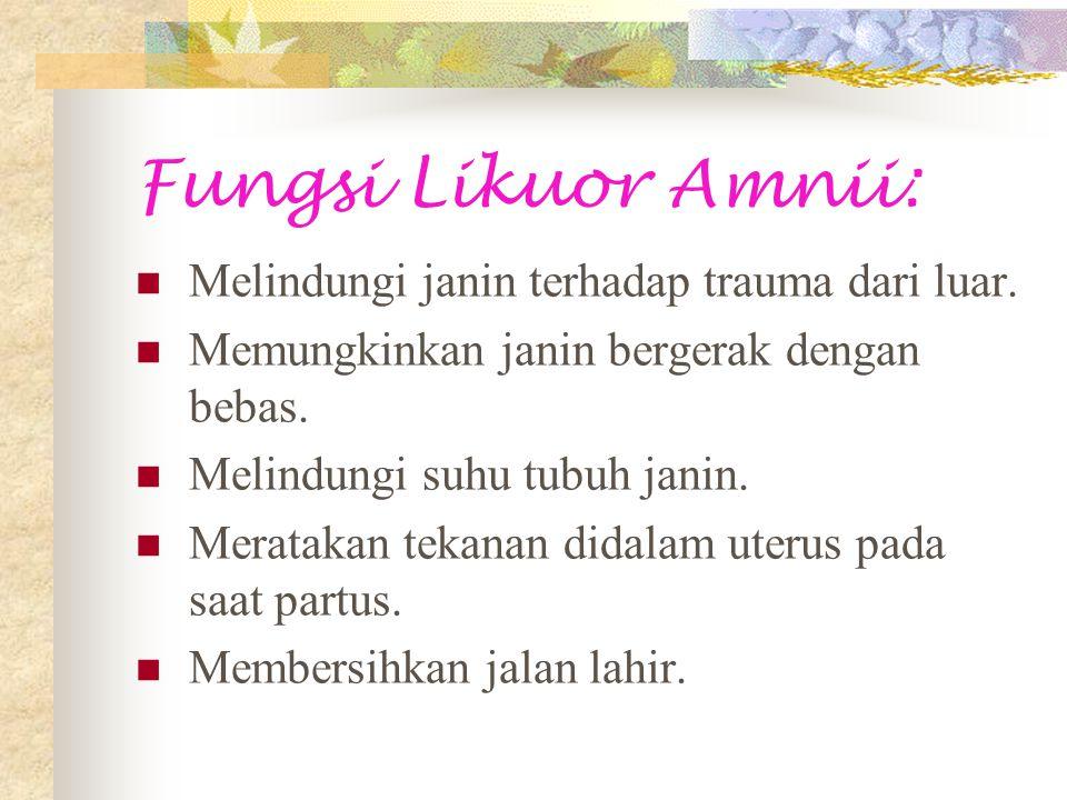 Fungsi Likuor Amnii: Melindungi janin terhadap trauma dari luar.