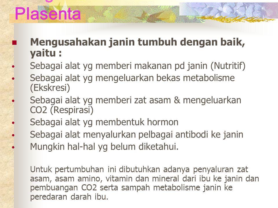Fungsi Plasenta Mengusahakan janin tumbuh dengan baik, yaitu :