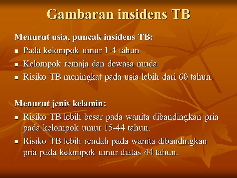 Gambaran insidens TB Menurut usia, puncak insidens TB: