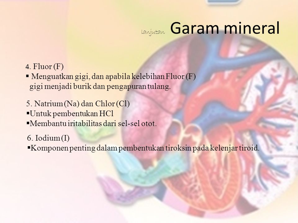 lanjutan Garam mineral