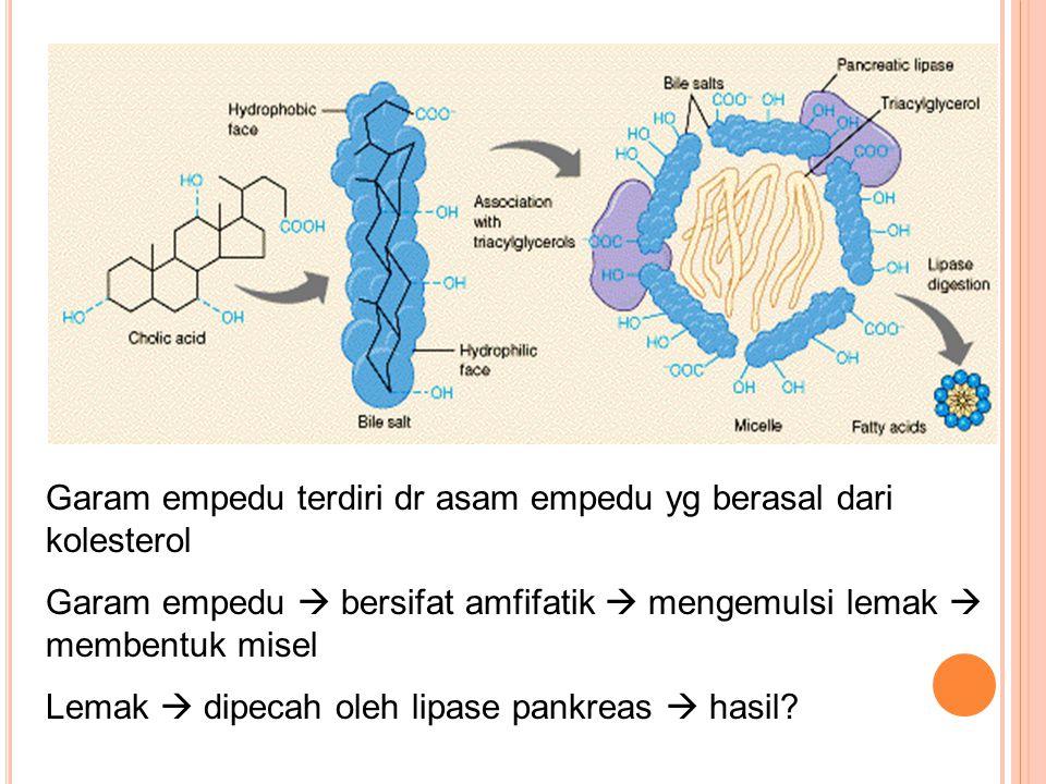 Garam empedu terdiri dr asam empedu yg berasal dari kolesterol