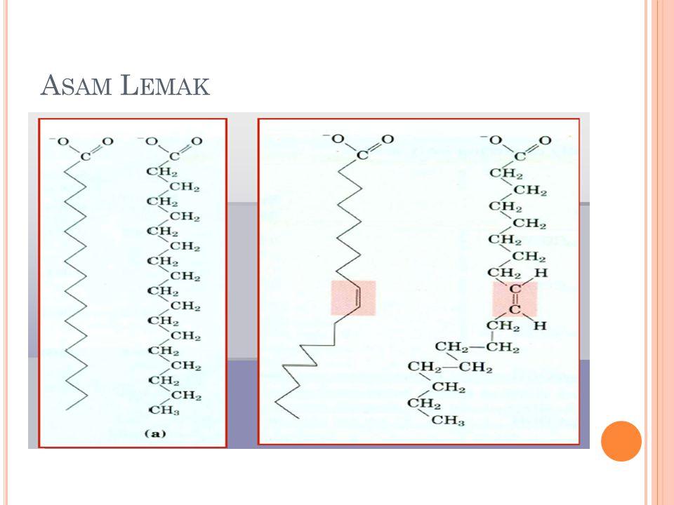 Asam Lemak