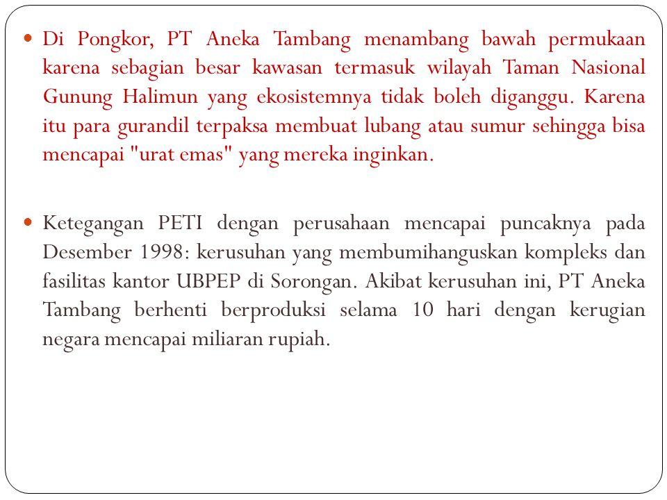 Di Pongkor, PT Aneka Tambang menambang bawah permukaan karena sebagian besar kawasan termasuk wilayah Taman Nasional Gunung Halimun yang ekosistemnya tidak boleh diganggu. Karena itu para gurandil terpaksa membuat lubang atau sumur sehingga bisa mencapai urat emas yang mereka inginkan.