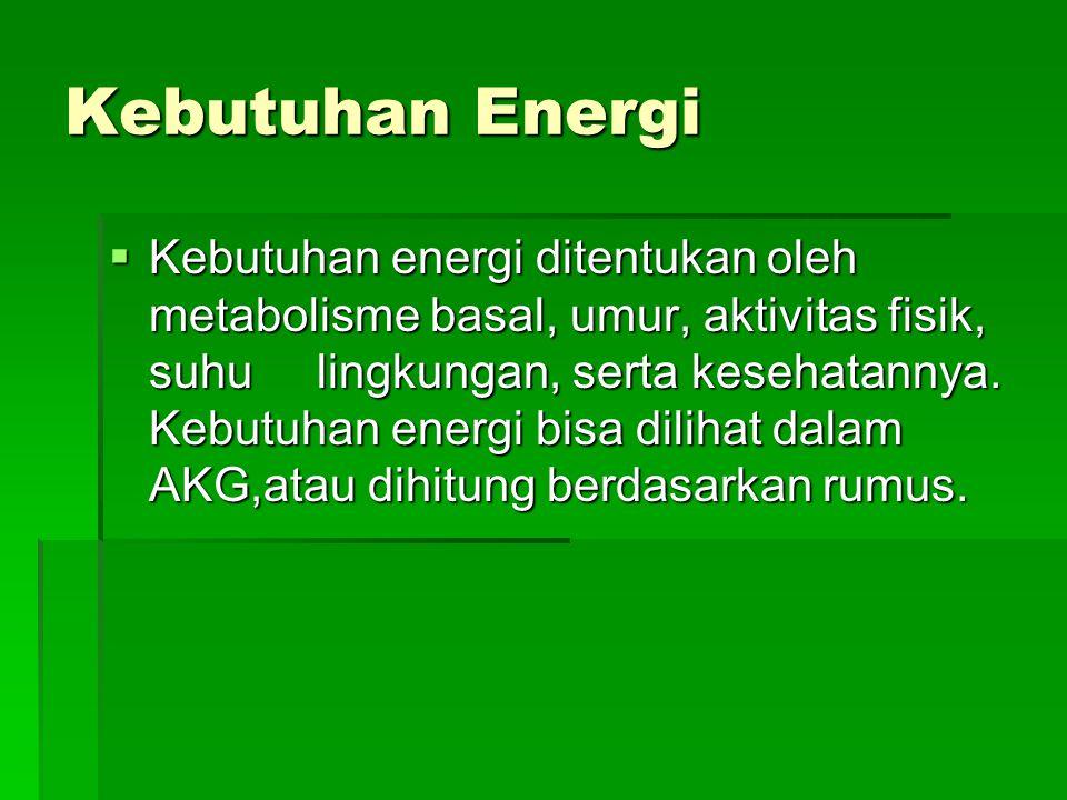 Kebutuhan Energi