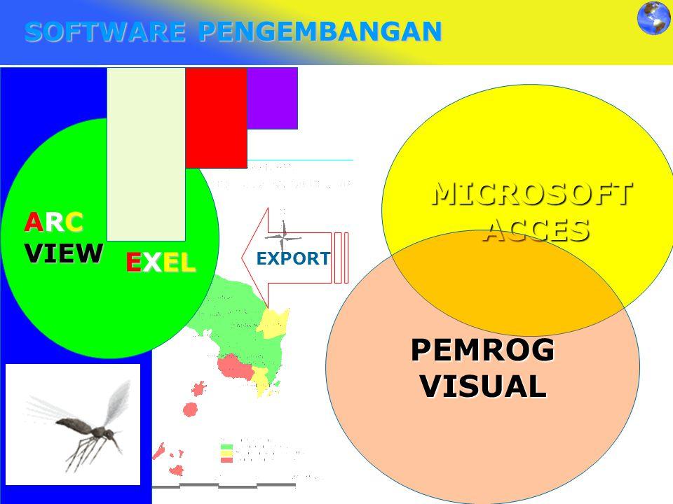 MICROSOFT ACCES PEMROG VISUAL