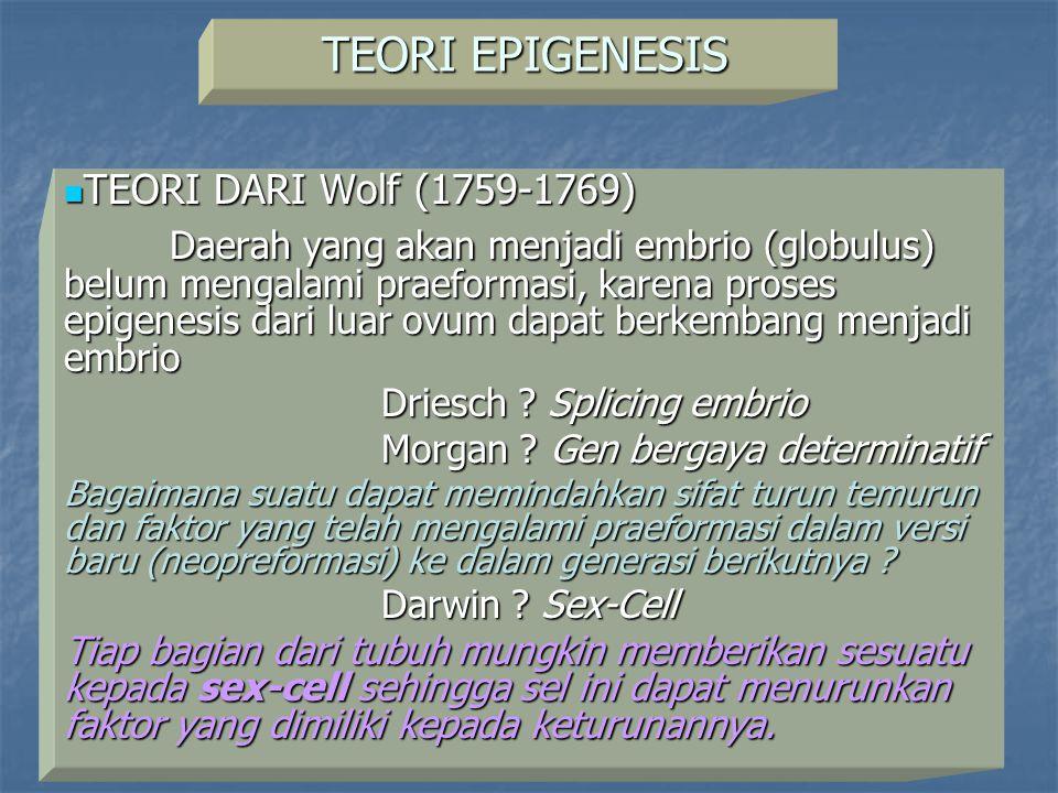 TEORI EPIGENESIS TEORI DARI Wolf (1759-1769)
