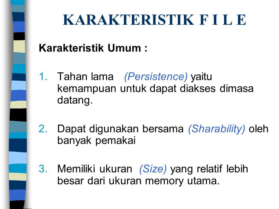 KARAKTERISTIK F I L E Karakteristik Umum :