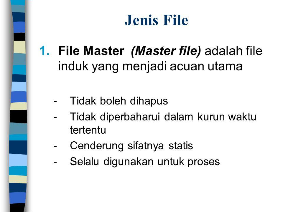 Jenis File File Master (Master file) adalah file induk yang menjadi acuan utama. Tidak boleh dihapus.