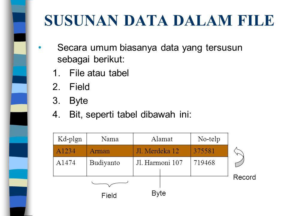 SUSUNAN DATA DALAM FILE