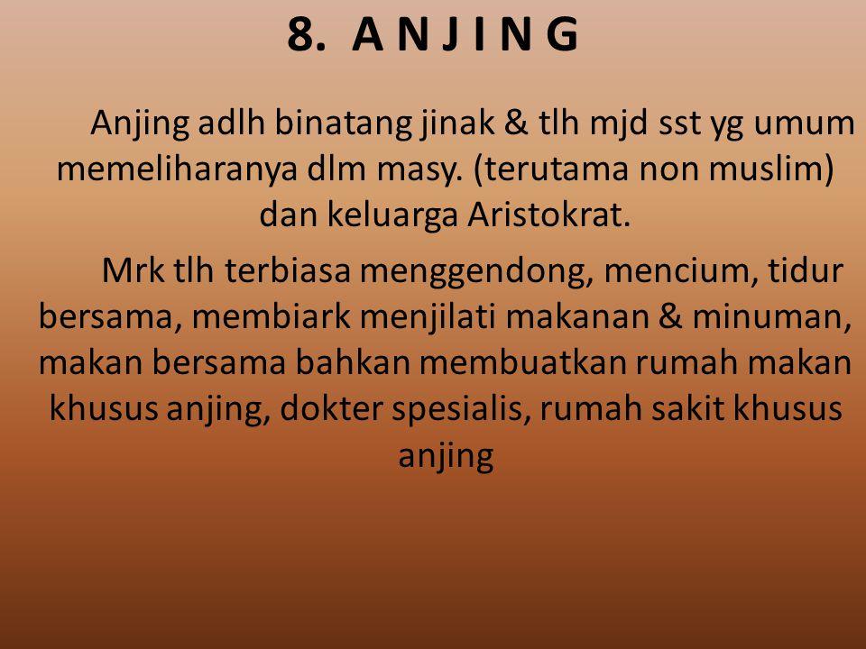 8. A N J I N G