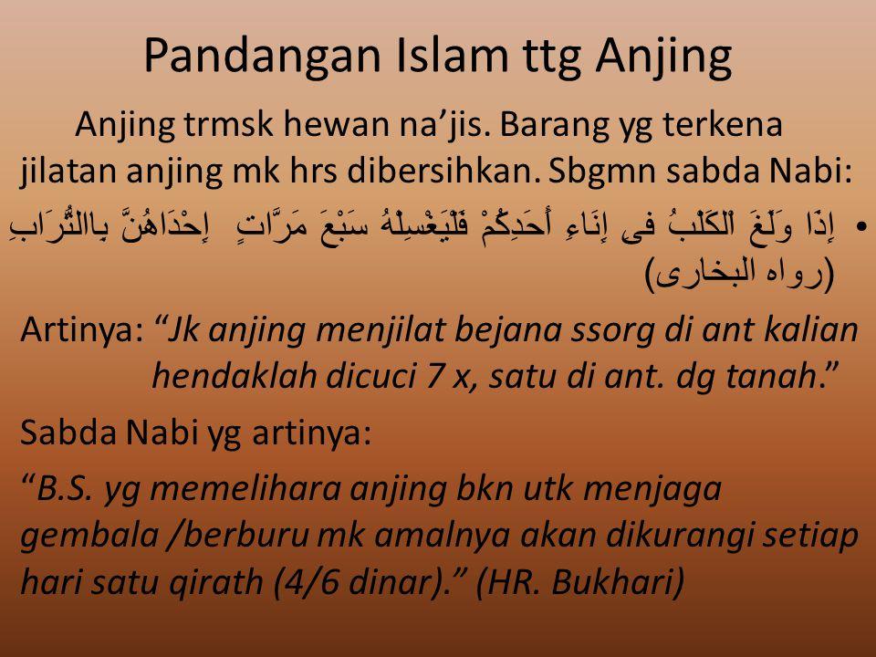 Pandangan Islam ttg Anjing