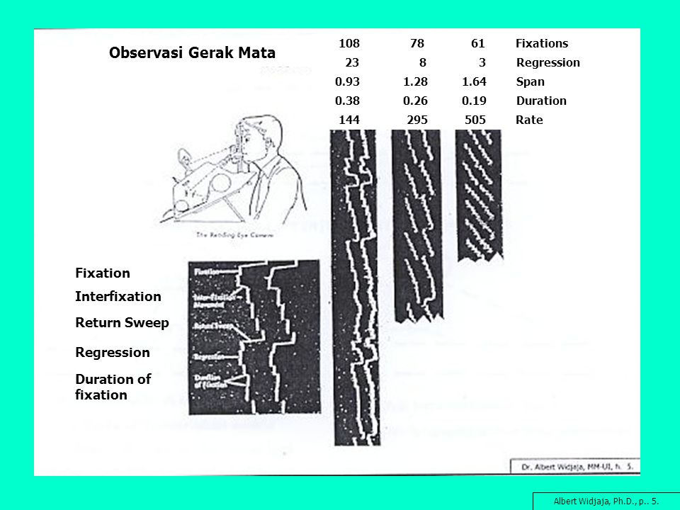 Observasi Gerak Mata Fixation Interfixation Return Sweep Regression