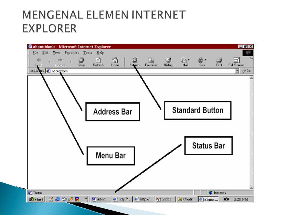 MENGENAL ELEMEN INTERNET EXPLORER